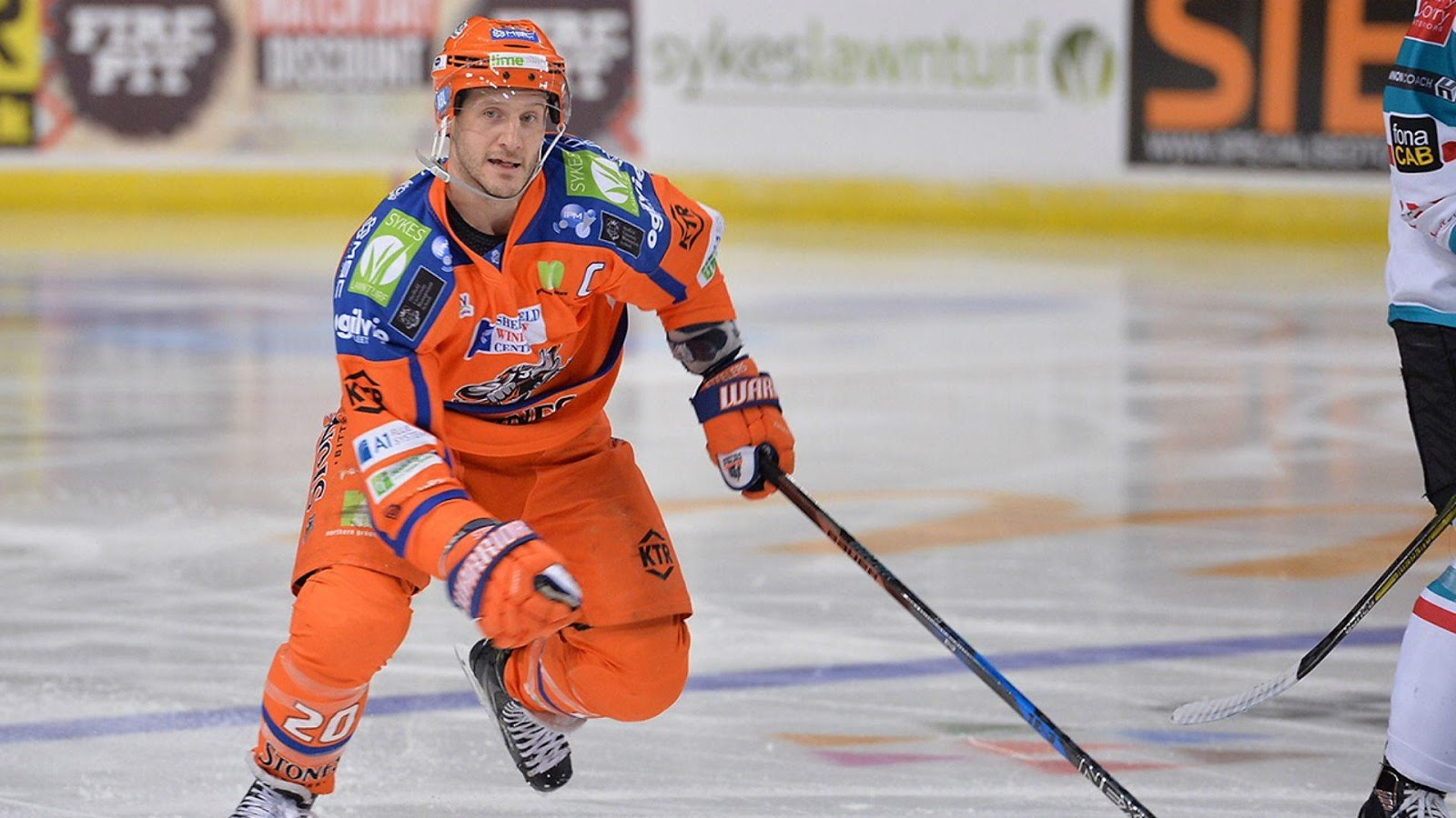 Image result for Sheffield Steelers Jonathan Phillips