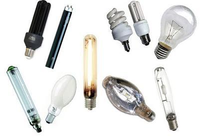 Виды электрических лампочек